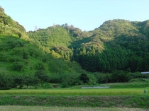 田園風景(西へ200メートル)