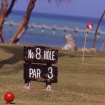 フィールドアクティビティ『パットゴルフ』