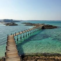 ≪景観≫海上遊歩道(敷地内)