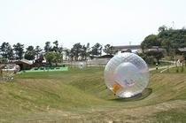 芦北海浜公園(当館より車で約25分)
