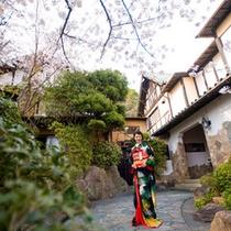 花月だからできる桜に囲まれる結婚式も好評です。