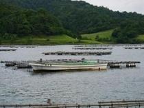 かかり釣り用の舟