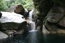 猿ヶ城渓谷 はじらいの滝