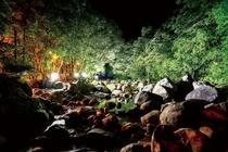 【猿ヶ城渓谷】夜のライトアップ