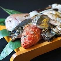 【〜大漁会席〜日本海で水揚げされた海の幸】新鮮で美味しいお魚を中心とした和会席
