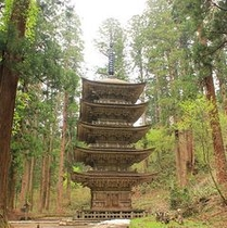 【出羽三山・羽黒山】国宝五重塔や、2446段の石段と杉並木が続き、神聖な雰囲気