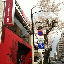 ◇◇外観・桜・南側より◇◇