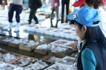 女将さん自ら漁業市場へ