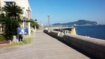 海辺の散歩道