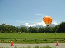 夏の農場と気球