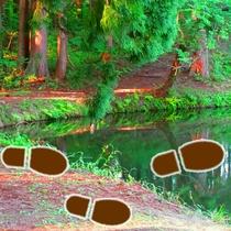 *【おまつの池】散歩コースとして人気のスポット。朝食前の軽いトレッキングに最適です♪
