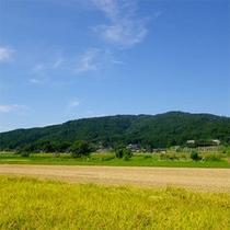 ■周辺景色■