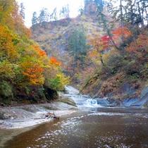 *【周辺観光】桃洞渓谷は、太平湖・小又峡の上流部、ブナ原生林を流れるノロ川の源流部にあたります。