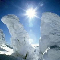*【樹氷】冬の期間しか見ることのできない、雪と氷の芸術です。