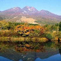 *秋のいもり池(紅葉例年見頃10月中旬頃〜)