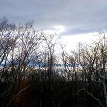 *客室から見える雲海