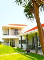 beach house & cafe