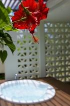 プレミアルームのジャグジーイメージ写真