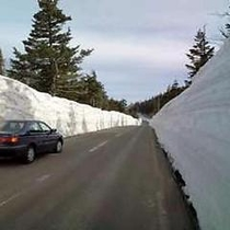 スカイライン雪の回廊