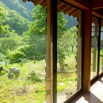 窓の外には豊かな自然が広がります。