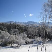 テラス蓼科から望む冬の八ヶ岳連峰
