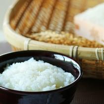 高島藩献上米