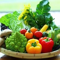 こだわりの地元野菜を使用