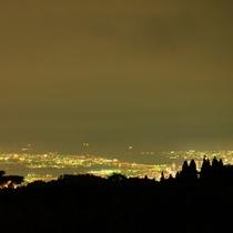 スカイビューテラスからの夜景