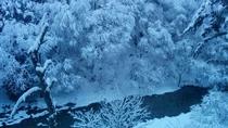 冬の客室から見える景色