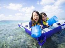 アクティビティ:南の島の珊瑚デビュー