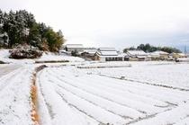 雪の森羅塾