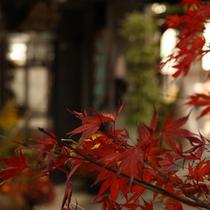沢山の自然に囲まれ、秋になると紅葉にそまります。