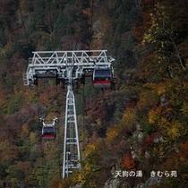 谷川岳天神平(6)
