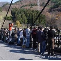 諏訪峡大橋(2)