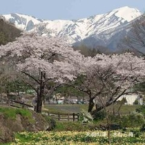 諏訪峡(1)