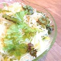 【志高】朝食メニュー 生野菜サラダ