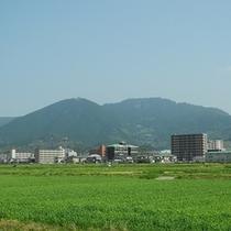 篠栗若杉山