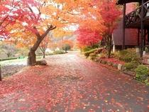 ストロープン施設全体の紅葉風景