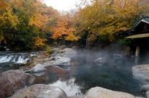 秋紅葉 幽谷の湯1