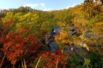 秋紅葉 山みず木外観