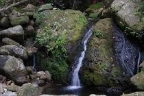 ホトー川の小さな滝