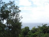 コテージ山から望む太平洋