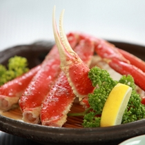 *【ずわい蟹】身のたっぷりつまったずわい蟹贅沢にお楽しみください。