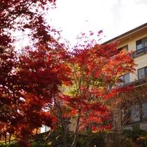 紅葉の那須湯本十石
