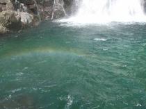 大川の滝(虹)