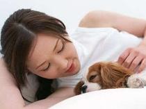 全ての宿泊プランで客室まで小型犬同伴歓迎