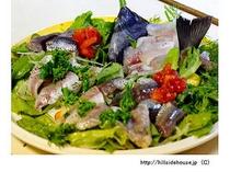 生野菜とお刺身の盛り合わせ