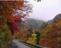 照葉峡の紅葉(10月)