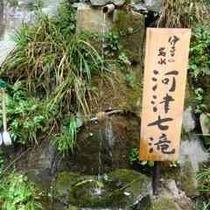 河津七滝自然保護区(正方形)