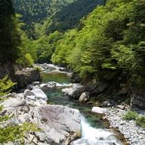 ◆【馬瀬川】鮎釣りのメッカ清流馬瀬川